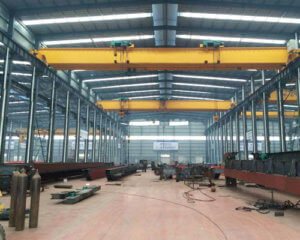 Electric Hoist Crane for Sale