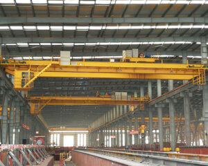 Electric Double Girder Overhead Crane Manufacturer
