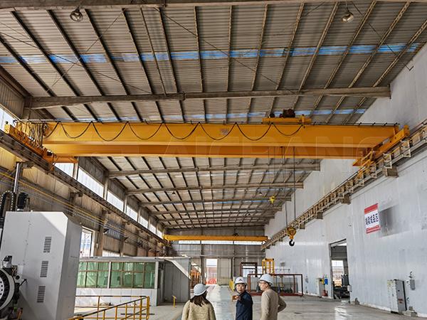 Double Girder Crane Manufacturer